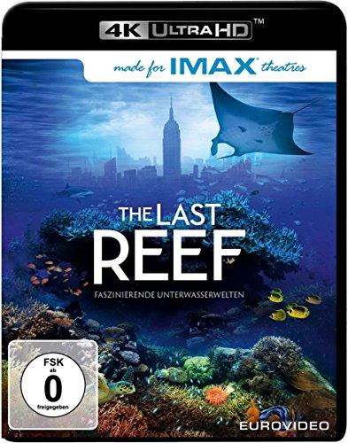 The Last Reef - 4k Ultra HD Blu-ray