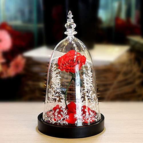 TP&DD Die schöne und das Biest Rose LED-licht Ewige Blumen,Glasabdeckung Geschenkbox,Valentinstag Kreative Geschenke Gefallene blütenblätter-A 22x22x34cm(9x9x13inch)