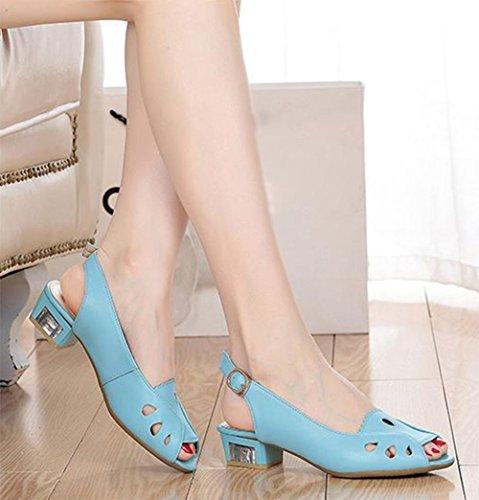 Im Sommer mit Sandalen weiblichen Sandalen weibliche Fischköpfe einfache Sandalen Schnalle days blue