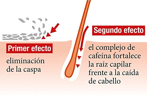 51PHAzAeLnL - Alpecin Champú Doble Efecto, 2 x 200 ml - Champú anticaída y anticaspa