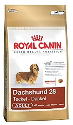 Royal Canin Dachshund 28 Dry Adult Dog Food