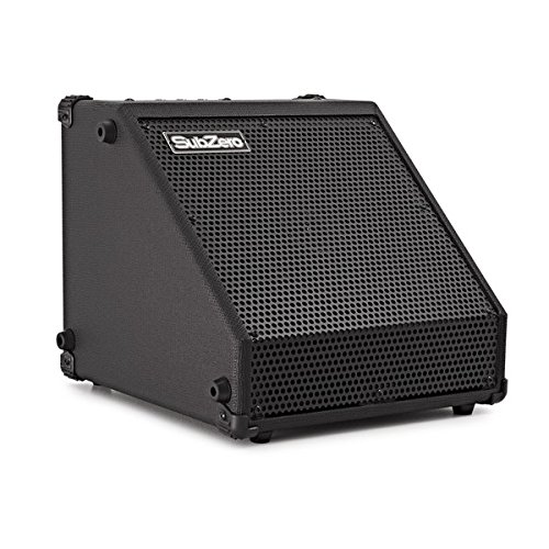 Subzero DR 30 Amp per Batteria o Tastiera