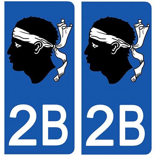 Stickers recouvert dun pelliculage sp/écifique pour Resister aux intemp/éries 46 Lot- Stickers Garanti 5 Ans aux Rayons UV. DECO-IDEES 2 Stickers pour Plaque dimmatriculation