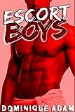 Escort Boys  (+ Nouvelle M/M BONUS): (Roman Érotique Gay, Domination Chantage, Prostitution, Tabou, Adulte MM)