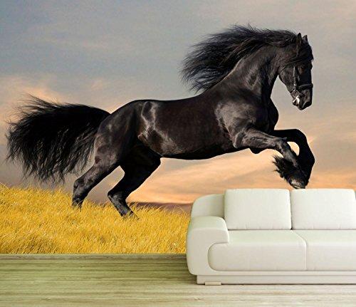 Preisvergleich Produktbild B-wie-Bilder.de XXL Poster Fototapete Tapete Vlies Pferd in der Wildnis Material Decor selbstklebend,  Größe 160 x 120 cm 2-TLG