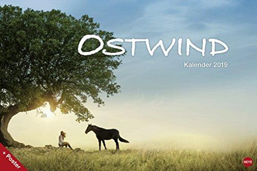Ostwind Broschurkalender XL - Kalender 2019 - Wandkalender - 45cm x 30 cm (offen 45 cm x 60 cm)