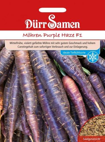 Möhrensamen - Möhren Purple Haze F1 von Dürr-Samen