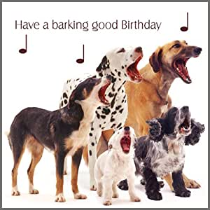 "Mixed Dogs ""Dog Song"" Birthday Card"