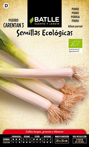 semillas-batlle-654901bols-puerro-grueso-carentan-3-eco