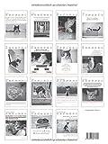 Der literarische Katzenkalender 2019: Zweifarbiger Wochenkalender - Julia Bachstein (Hrsg.)
