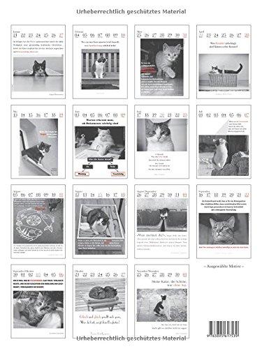 Der literarische Katzenkalender 2019 - 2