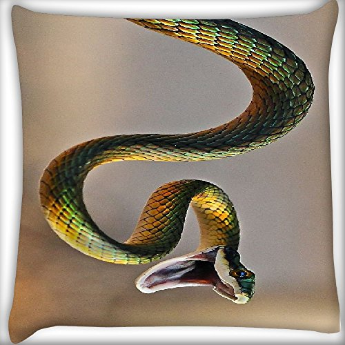 Snoogg Green Snake 12 x 12 Inch Throw Pillow Case Sham Pattern Zipper Pillowslip Pillowcase For Drawing Room sofa Couch Chair Back Seat  available at amazon for Rs.145