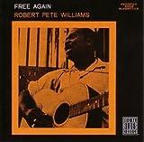 Songtexte von Robert Pete Williams - Free Again