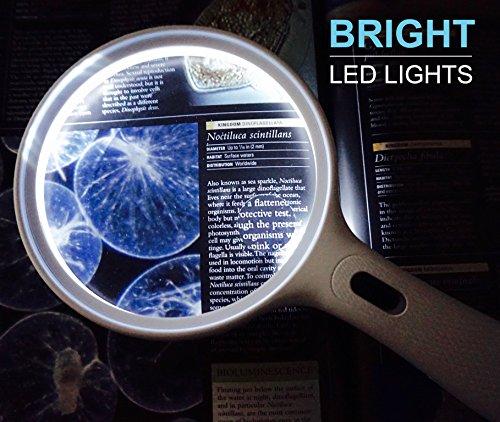 Fancii große Leselupe Lupe mit LED Licht und 2-fach 3,5-fach Vergrößerung - Grosse 138mm Beleuchtet Handlupe für Senioren zum Lesen - 6