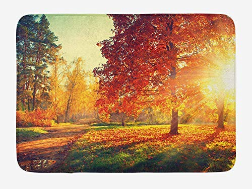 PdGAmats Fall Bath Mat, Vibrant Misty Day in Forest Sun Rays Trees Foliage Fallen Leaves Calm View 23.6 W X 15.7 W Inches Misty Leaf