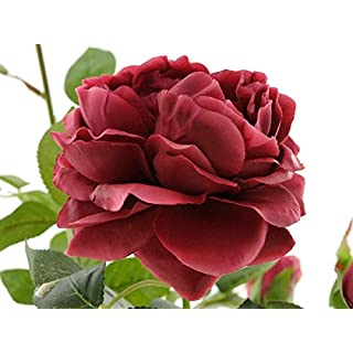 aniba Design aniba Kunstrose mit 3 Blüten und 3 Knospen weinrot ABROS011