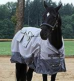 Magnetfeldtherapiedecke Magmobil HORSE