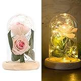 Greenbang 2 PCS Seda artificial Rose con 20-LED tira de luz en una pantalla de vidrio Blanco cálido Gran regalo para la esposa, novia, cumpleaños, día de la madre, aniversario de bodas, día de San Va
