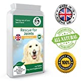 Premium Dog Joint Supplement/Arthritis Pain Relief - 120 Chewable Chicken Flavour Tablets - 100% All Natural, Powerful Human Grade Ingredients. Glucosamine Chondroitin MSM Green Lipped Mussel. Suitable for all Dog Breeds, Young & Old - Proudly made in the UK to GMP Code of Practice.