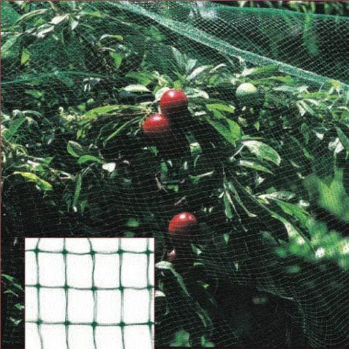 Papillon Filet anti-oiseaux, rouleau de 2 x 10 m