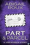Part & Parcel: A Sidewinder Novel (English Edition)