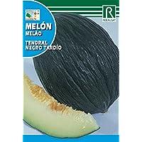 ROCALBA SEMILLA Melon T.N. TARDIO 10ud