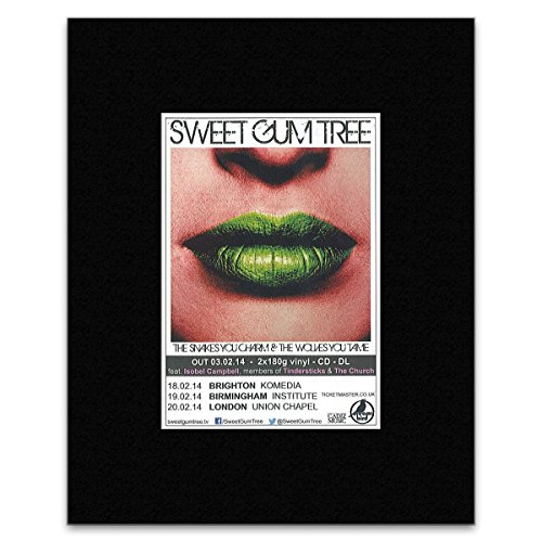 Sweet Gum Tree (SWEET GUM TREE - Snakes & Wolves Matted Mini Poster - 13.5x10cm)