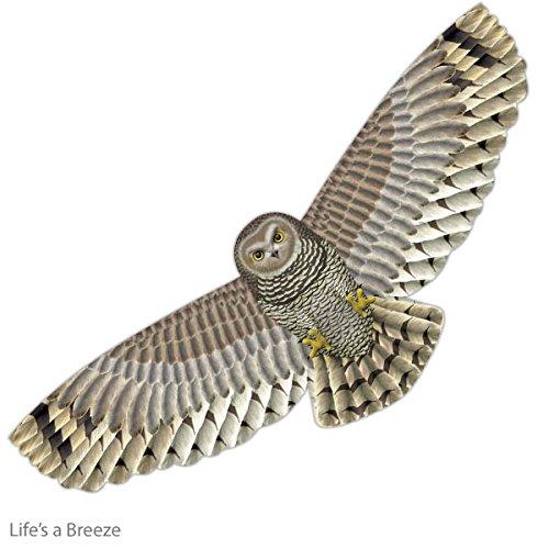 Chouette Kite. Supersize Crop Protection Kite. Épouvantail. avec fil offert