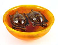 Tortoise is the symbol of good luck and prosperity and when it always float in bowl at home/office/factory and any work place .its deemed that it will bring the good luck where it will be placed. Tortoise color can change