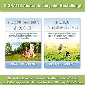 PetPäl Kit de jeu pour chien