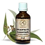 Eukalyptusöl Ätherisch 50ml - Reines Und Natürliche Eukalyptus Öl - Eucalyptus Globulus - Besten Für Beauty - Baden - Sauna - Körperpflege - Wellness - Schönheit - Entspannung - Massage - Inhalieren - Aroma Diffuser - Duftlampe - Glasflasche - Essenzielles Eukalyptusöl Von Aromatika
