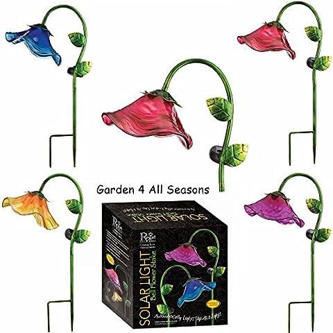 Lot de 4–Bleu, Rose, Violet et jaune–Creekwood (Regal Art & Cadeau) solaire Jardin Piquets dans une boîte cadeau–Grande Fleur de cloche