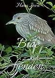 Bide fjenden (Danish Edition)