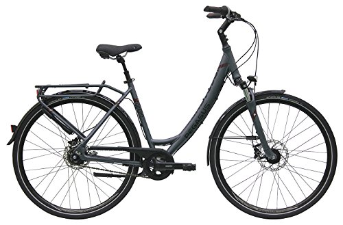 Damen City Fahrrad 28 Zoll - Pegasus Opero SL - 8 Gänge Nabenschaltung Rücktrittsbremse Tiefeinstieg - platinum grau matt