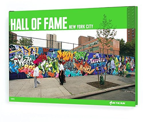 Hall of Fame: New York City Collector's Edition (On the Run (from Here to Fame Hardcover)) by Alain Mariduena (2012-09-28)