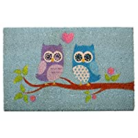 Coir Door Mat - Love Owls with Blue Background