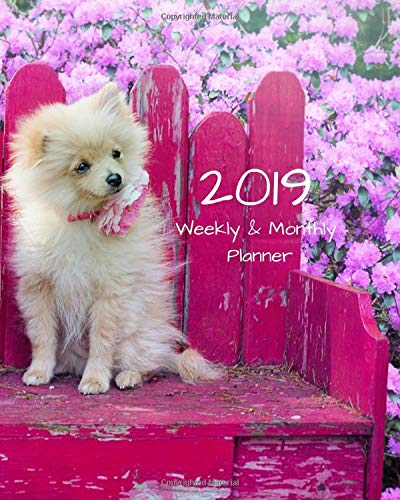 2019 Weekly and Monthly Planner: Pomeranian Dog Daily Organizer -To Do -Calendar in Review/Monthly Calendar