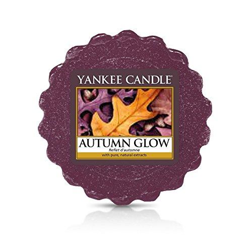 YANKEE CANDLE 1556222E Reflets d'automne Tartelette, Cire, Pourpre, 6 x 5,7 x 2 cm
