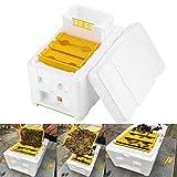 Mioloe Harve Bee Hive, Harvest Bee Hive impollinazione Apicoltura King Box per Queen Breeding Tool Attrezzature per Apicoltura