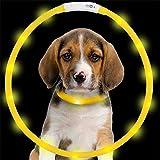 JIALUN- LED Haustier-Versorgungsmaterialien wasserdichtes justierbares blinkendes glühendes Haustier-Sicherheits-Kragen USB aufladbares LED leuchtendes Hundehalsband ( Color : Yellow )