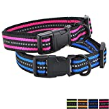 Mile High Life Night Reflektierende Doppelstreifen Nylon Hundehalsband (2 Pack Blau/Helles Rosa, X-Small Neck 9