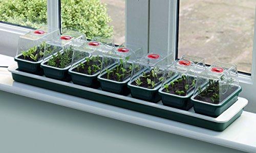 Seedeo® beheizbare Mini-Gärtnerei mit 7 kleinen Gewächshäusern + 3 Liter Anzuchterde + 2 Samenproben (Garland)