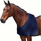 Weatherbeeta Deluxe Shoulder Guard Navy Pony