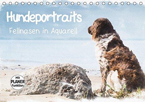 Hundeportraits - Fellnasen in Aquarell (Tischkalender 2018 DIN A5 quer): Hundeportraits in Aquarell von der Künstlerin und Fotografin Sonja Teßen ... 14 Seiten ) (CALVENDO Tiere)