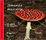 Amanita Muscaria ~ Fly agaric (FUNGI Book 30) (English Edition)