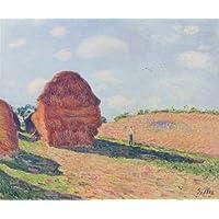 Alfred Sisley - Poster e Stampe su