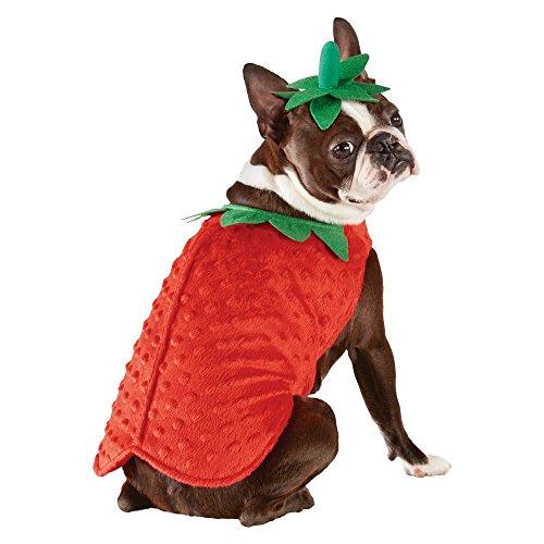 Erdbeere Hunde Fasching Halloween Karneval Kostüm Large