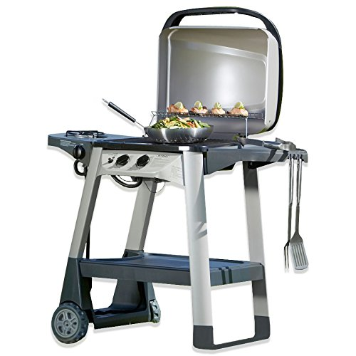Outback Excel 300 2 Burner Gas Barbecue