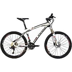 """BEIOU® de fibra de carbono de bicicletas de montaña MTB Rígidas LTWOO 30 26"""" 13 kg Velocidad externo del cable profesional de enrutamiento T700 de Toray CB083"""