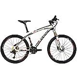 BEIOU® de fibra de carbono de bicicletas de montaña MTB Rígidas LTWOO 30 26 13 kg Velocidad externo del cable profesional de enrutamiento T700 de Toray CB083